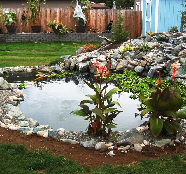 Sterling pond service projects marysville pond for Pond service